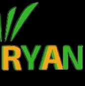 RYAN GRUPO EMPRESARIAL